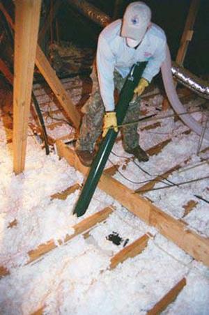 Attic Restoration Amp Insulation Service Eco Wise Pest
